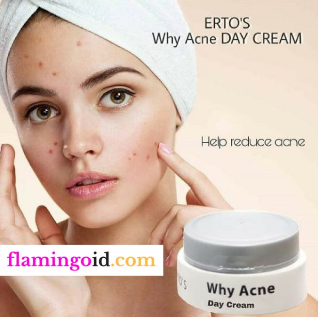 ERTOS Why Acne Day Cream - Cream Pagi Meredakan Jerawat ...
