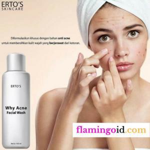 ertos why acne facial wash