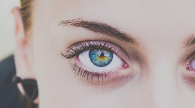 memilih bulu mata palsu